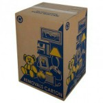 removalist cartons